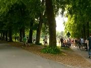 Grünflächenunterhaltung Impressionen